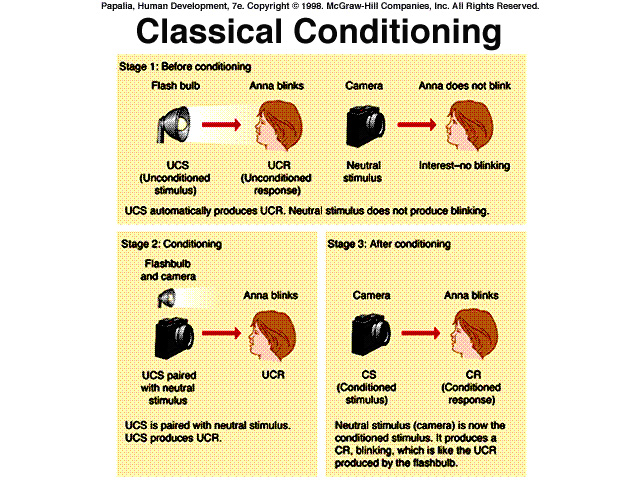 classical conditioning Classical conditioning is a reflexive or automatic type of learning in which a stimulus acquires the capacity to evoke a response that was originally evoked by another stimulus.
